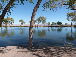 Medium ows ranch phot of pond
