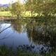Strawberry Park pond