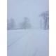 Route 38 at 9 a.m., photo by Mark Kratman.