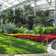 Garden Tours Make for Great Escapes - Jan 30 2015 0405PM
