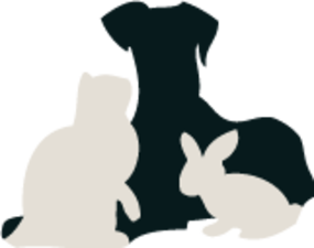 Medium your pets forever logo