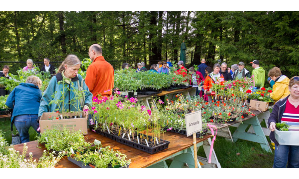 The Hanover Garden Club [Gallery Extra]   Here in Hanover