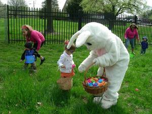 Milburn Orchards Easter Egg Hunt - start Mar 28 2015 1100AM