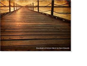 Medium daveedwards boardwalk