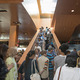 Visitors file up and down the staircase as they explore the new library. Photo by Brad Jacobson.