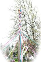 Medium 2011 may pole