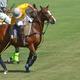 Nicholas Place of the Brandywine Polo Club pursues a goal