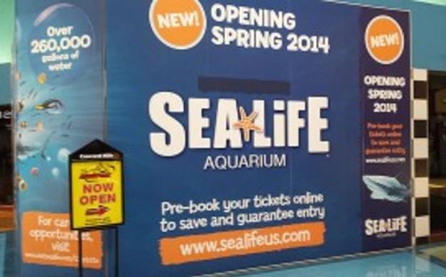 SeaLifeAquarium_NC