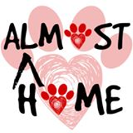 Almost 20home 20dog 20rescue 20logo
