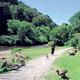 Etna Nature Trail