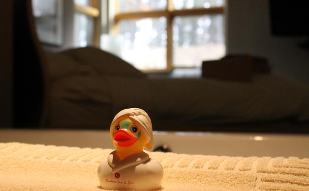 Duck_R