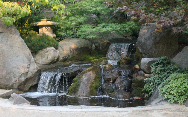 anderson japanese gardens rockford illinois