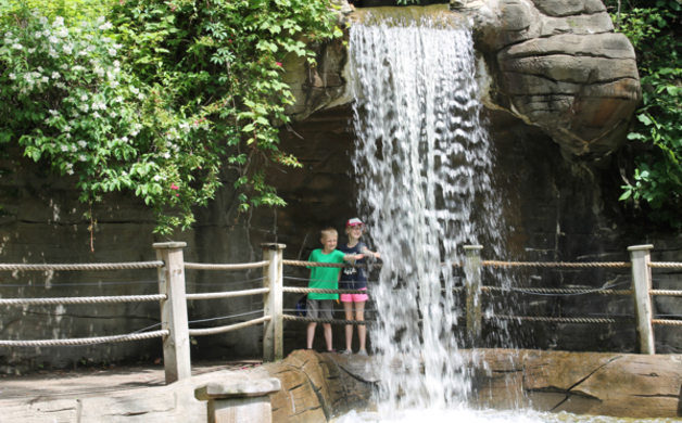 Waterfall Zoo