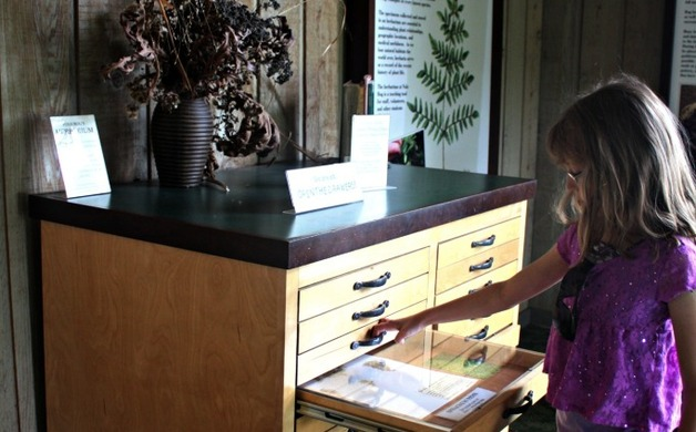 A stop in the Visitor Center is a good way to get oriented and learn about the flora and fauna you will see.