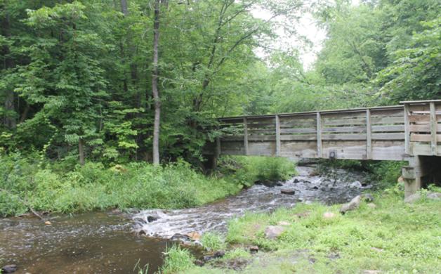 Bridge at Cascade Falls
