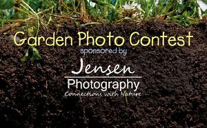 Medium gardenphotoarticleimage 01