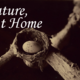 Nature at Home - Aug 18 2015 0315PM