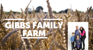 About The Cover Gibbs Family Farm - Sep 16 2015 0124PM