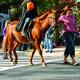 The Headless Horseman rides through a past Bordentown City Halloween Parade