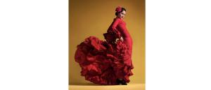 Medium flamenco 300x129