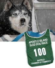 Medium dogsled3