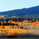 The famous Rabbit Ears Pass accompanied by fall colors. Photo By Nate Brothers