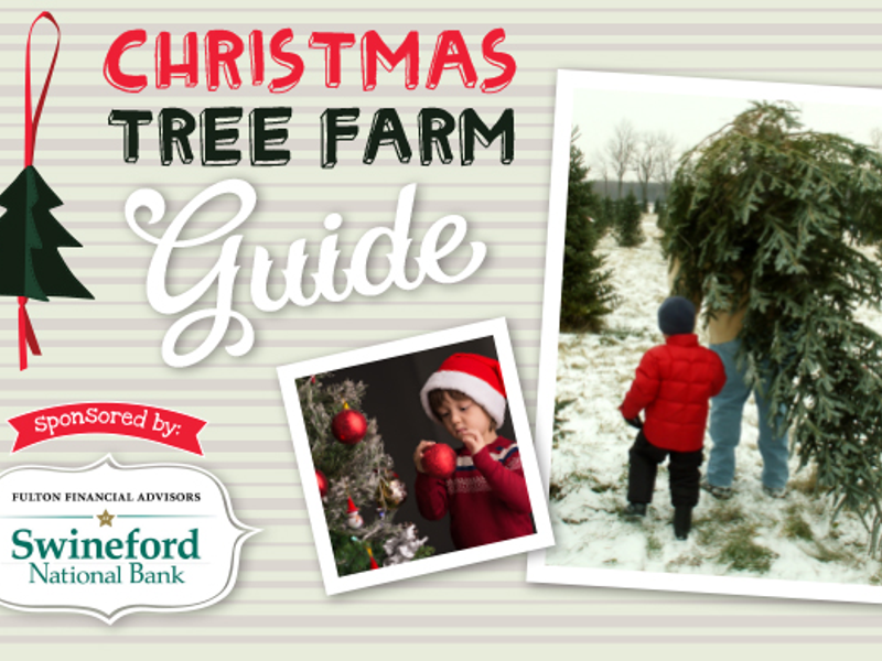 every year the popularity of choosing and cutting your own christmas tree grows christmas trees are iconic symbols of the holiday season - Middleburg Christmas Tree Farm