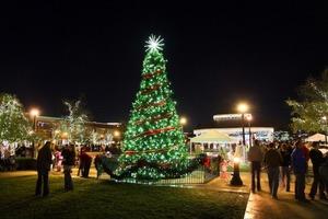 Southlakes Annual Tree Lighting - start Nov 21 2015 0400PM