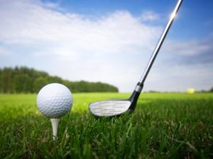 Medium golf 20tee 20pic
