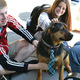 Pets Can Help You Live a Healthier Life - Jan 29 2016 0523PM