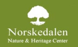 Medium norskedalen 20wisconsin 20parent 20logo