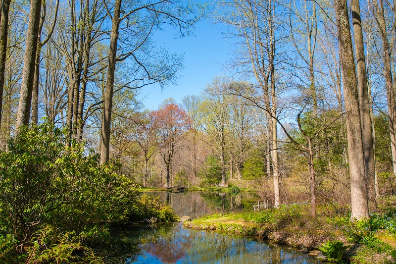 Early 20spring 20landscape 20smaller