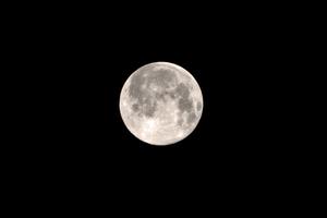Medium moon 20full 20linda 20patrick 20 1