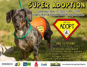 Valley Animal Centers Super Adoption event - start May 14 2016 0900AM