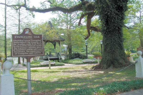 It's been said that the Evangeline Oak is the most romantic and most photographed oak tree in America. Situated on the Bayou Teche and flanked by a lovely gazebo, the tree's branches seem to extend forever.