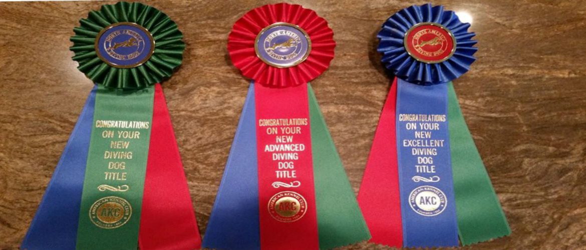 Dog 20show 20ribbons
