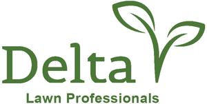 Medium delta logo