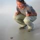 Hatchling on Blackbeard Island (2012): On Blackbeard Island, Sea Turtle Cooperative member Molly Martin of the U.S. Fish and Wildlife Service sees her first hatchling. Mark Dodd/Ga. DNR
