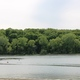 Fish Lake Regional Park photo by Wendy Erlien