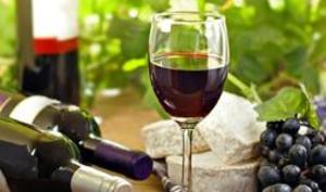 Wild Berry Cottage Wine Tasting Room  - Clarkesville GA