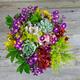 Thumb floral