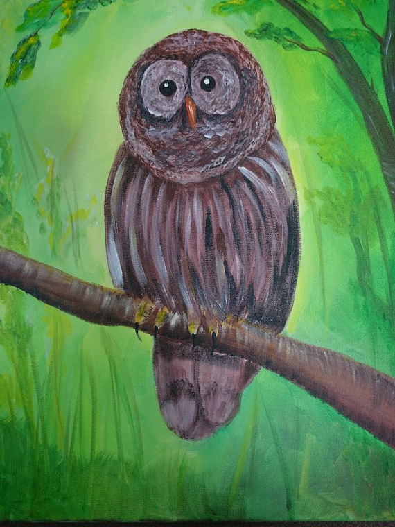 Barred 20owl