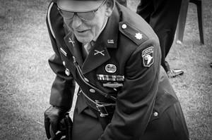 Medium veterans of the second world 1400838396tgn