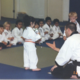 Getting her little ninja green belt.