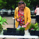 Catherine King looks at plants during Jordan Valley Water Conservancy District's second annual Plant Con. – Tori La Rue