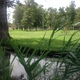 Fairmont park creek feature and grass.  – Jordan Greene