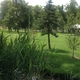 Large grassy areas are common at Fairmont Park. -- Jordan Greene