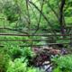 John J. Tyler Arboretum