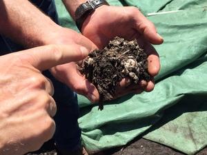 Medium home 20composting 20techniques 20 1
