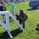 An owner helps her pug out on the obstacle course. (Kelly Cannon/City Journals)